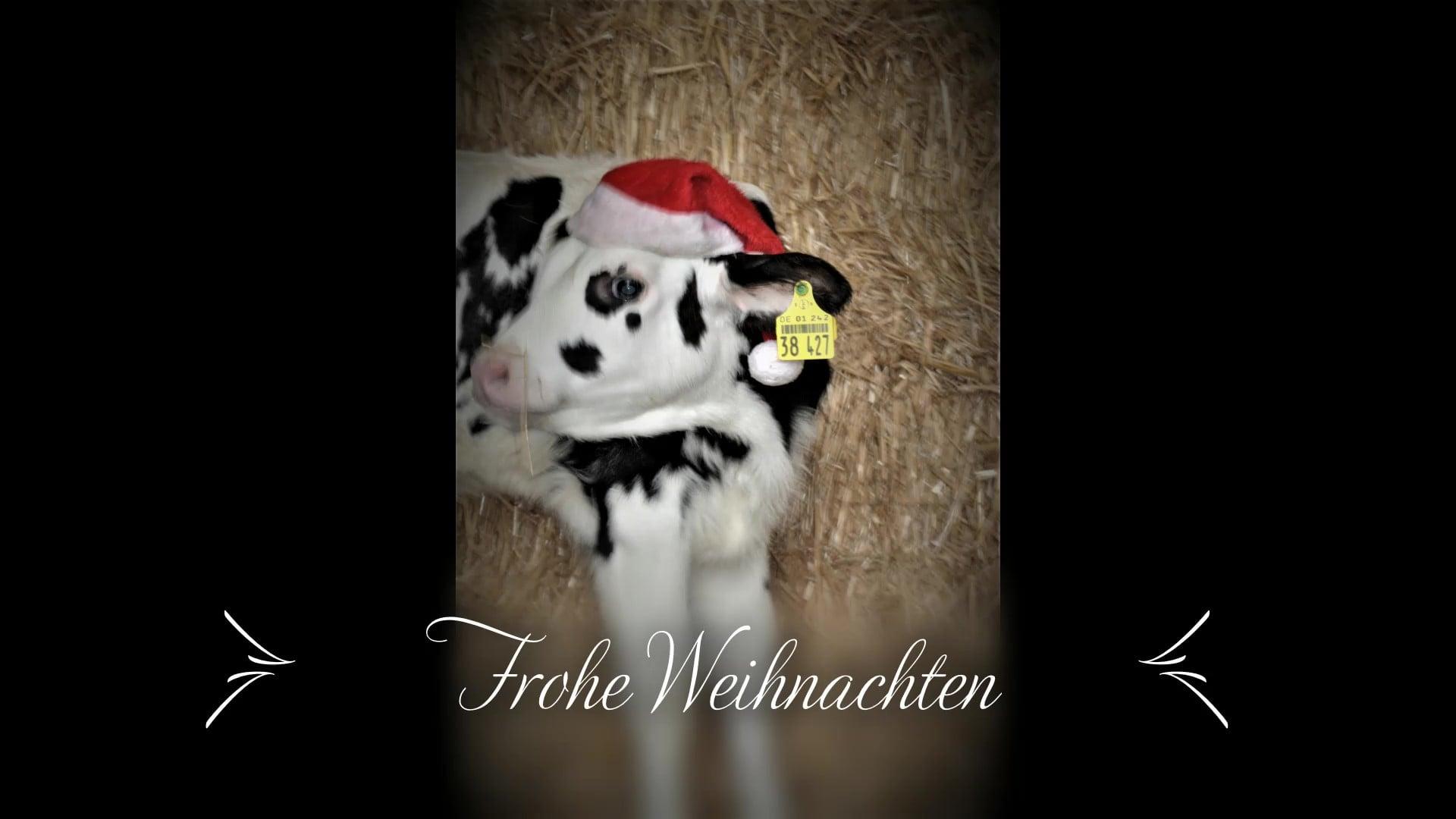 Frohe Weihnachten - Bauernhof Freyer